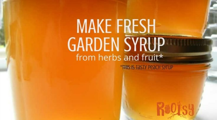 There comes a time in late summer when grocery stores, farmers markets, and home gardens become overrun with herbs and fruit just waiting to be processed into something tasty. Have a plan for creating fresh garden syrups from your bounty this year | Rootsy.org