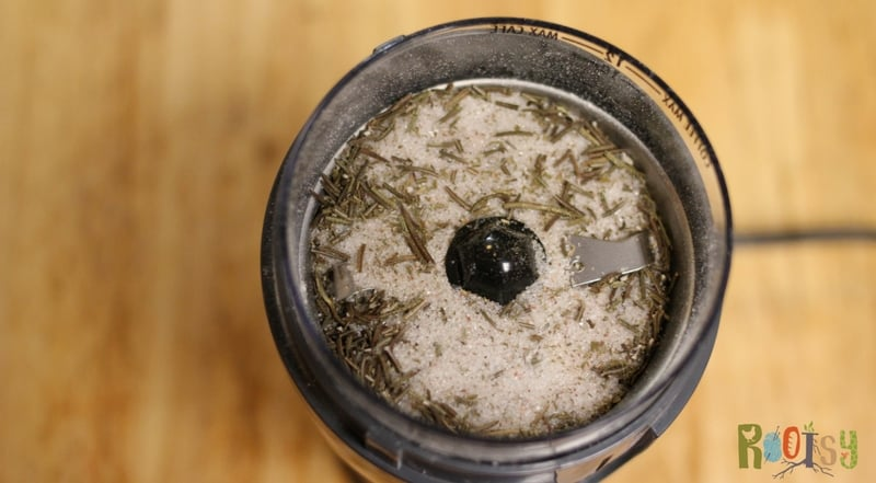 Dried rosemary herb salt in grinder. Herbs are easy to grow and produce quite a bit, however, they don't grow year round. Herb salt is a wonderful way to preserve your herb harvest. Learn how to make endless herbal salt combinations today | Rootsy.org
