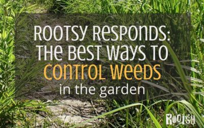 Rootsy Responds: The Best Ways to Control Weeds in the Garden