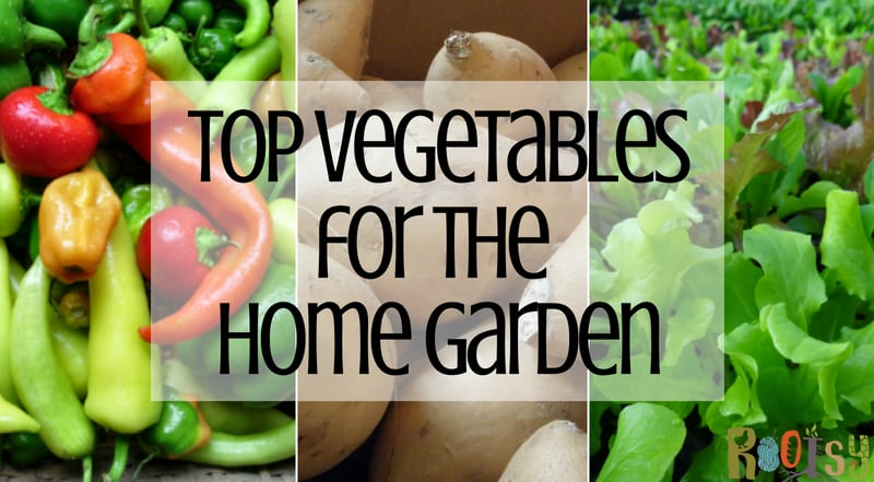 Top Vegetables for the Home Garden
