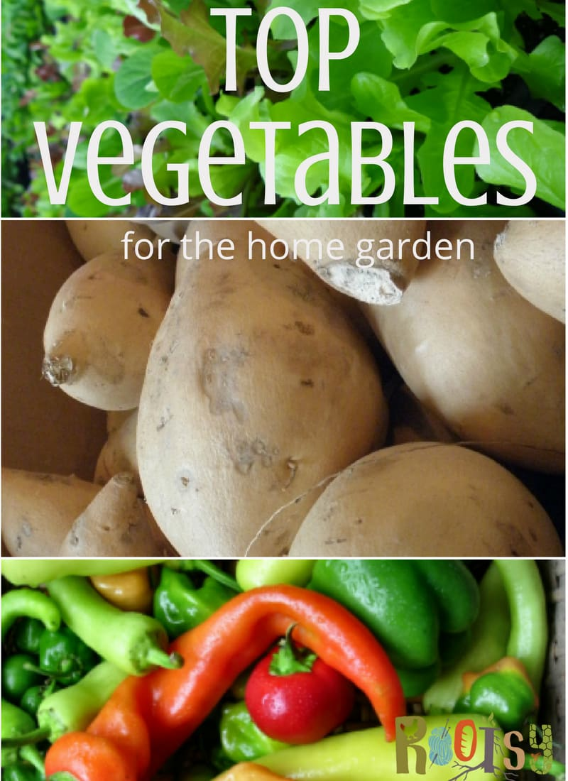 Raising your own vegetables for fresh home produce is a goal that every self-reliant gardener strives to achieve. You'll have success with vegetables for the home garden when you follow these simple rules.