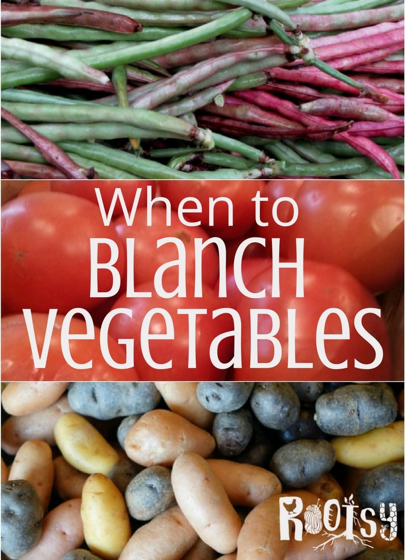 Serious home preservers look for shortcuts to help create the best product that will last the longest on the pantry shelves. Learning when to blanch vegetables can help save money, save time, and give you the best-tasting food | Rootsy.org