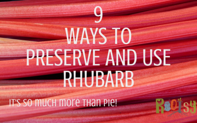 9 Ways to Preserve and Use Rhubarb