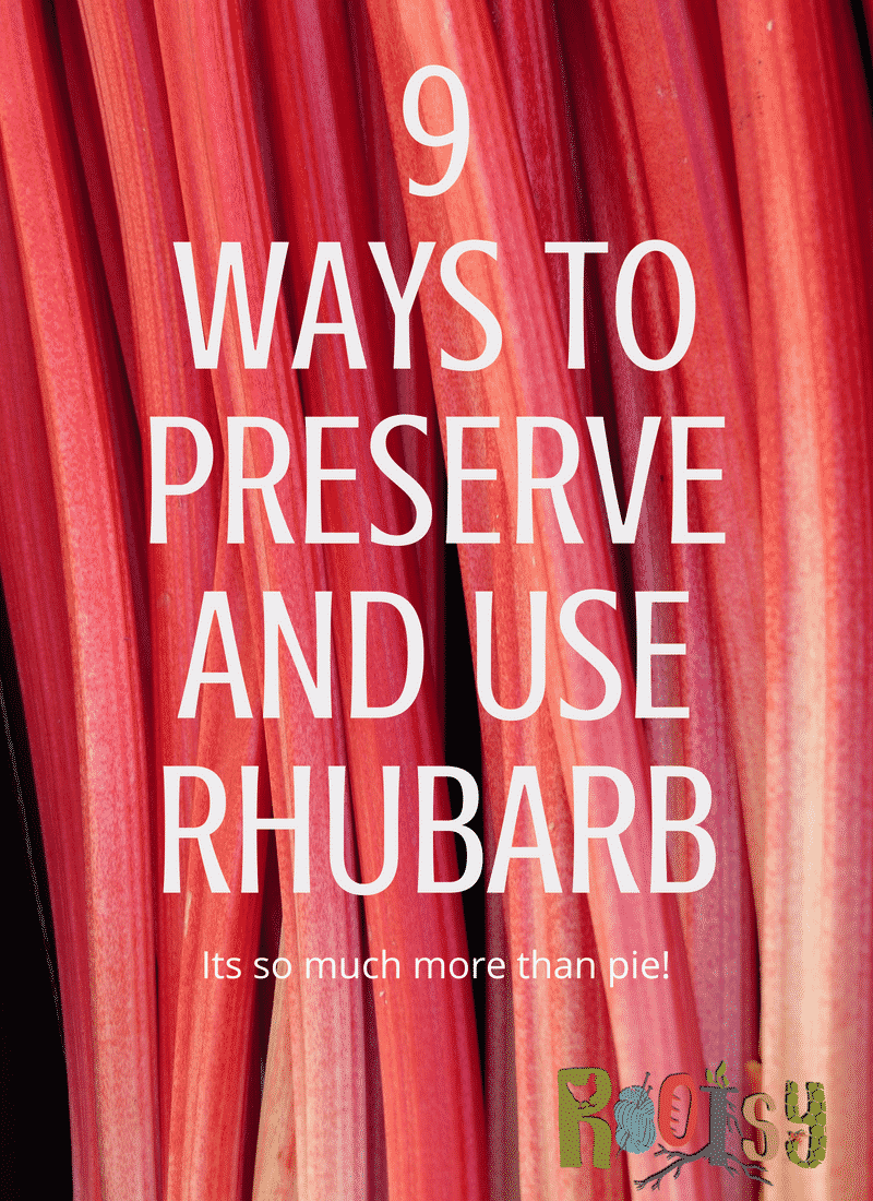 9 Ways to Preserve and Use Rhubarb - Its so much more than pie! - Rootsy