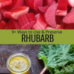 Using and preserving rhubarb