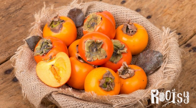 photo of american persimmons in basket