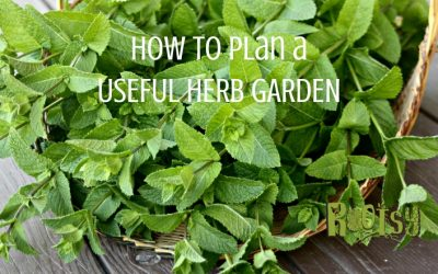 How to Plan a Useful Herb Garden