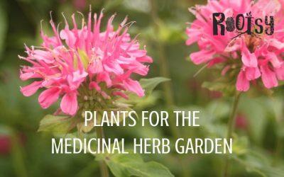 Plants for the Medicinal Herb Garden