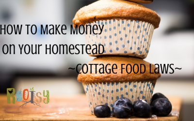 How to Make Money on your Homestead – Cottage Food Laws