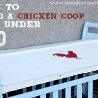 How to build a Chicken Coop for under $50 - Weed 'em & Reap