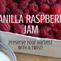 Vanilla Raspberry Jam