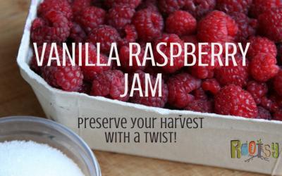 Homemade Vanilla Raspberry Jam