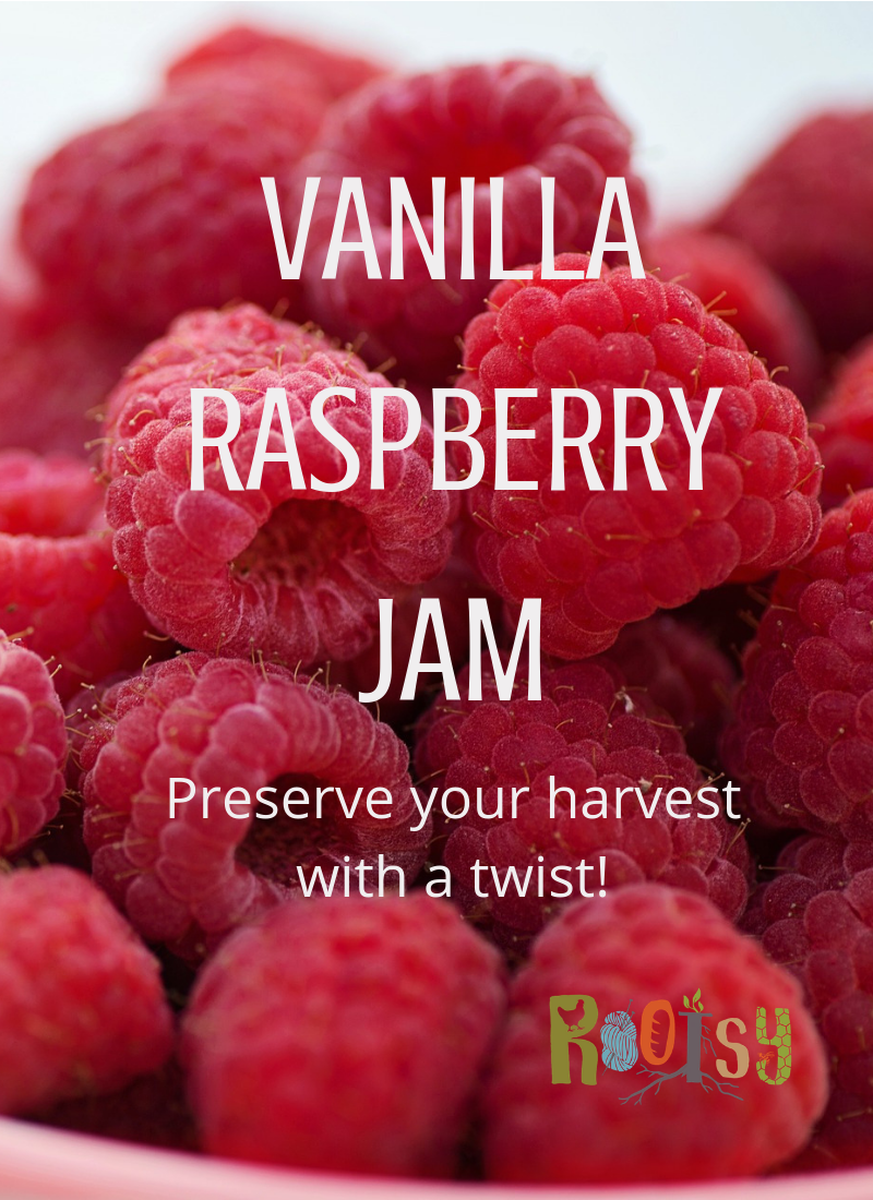 image of bowl of raspberries with the words Vanilla Raspberry Jam on it