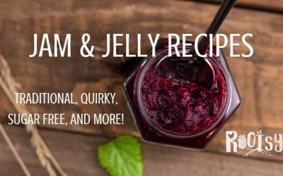 Jam and Jelly Recipes for Everything