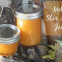 Melon Star Anise Jam