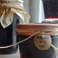Hedgerow Jelly: A Delicious Mixture of Fall Foraged Fruit