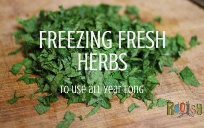 4 Ways of Freezing Herbs to Use All Year Long