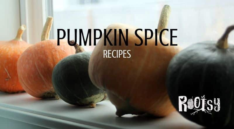 Pumpkin Spice Recipes and Everything Nice