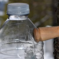 Spile: How to Tap into Sap - A Woodturning Project