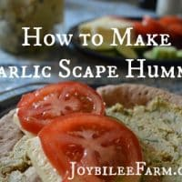 How to Make Hummus: Garlic Scape Hummus