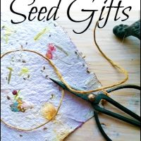 3 Seed Gifts