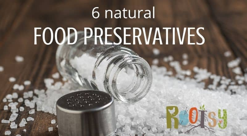 Image of salt shaker with the lid off and the salt spilled out on a wooden table. With text on the photo that reader 6 natural food preservatives.