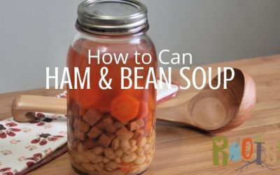 Canning Ham and Bean Soup