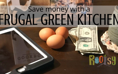 14 Easy Ways to Save Money with a Frugal Green Kitchen