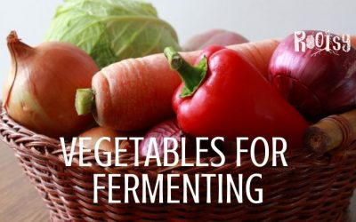9 Best Vegetables for Fermenting – other than cabbage