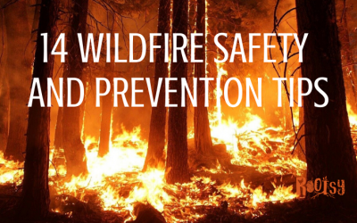 14 Tips for Wildfire Safety and Prevention at Home
