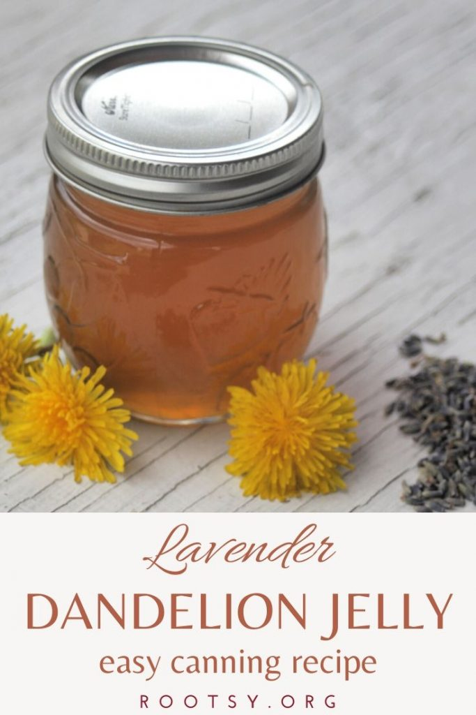 jar of lavender dandelion jelly on wooden table with fresh dandelions and dried lavender flowers
