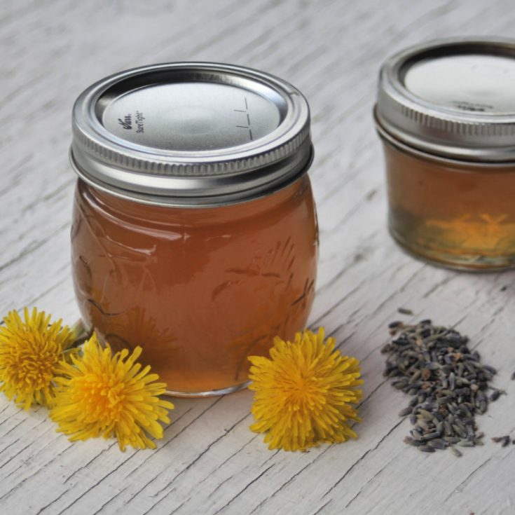 2 jars of lavender dandelion jelly on table surrounded by dandelion flowers and dried lavender buds.