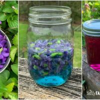 Homemade Violet Flower Jelly