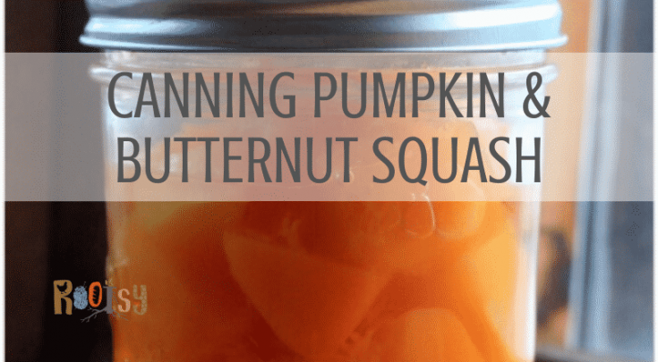 canning pumpkin and butternut squash