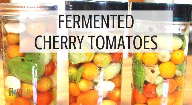 3 jars of tomatoes in a brine with fermentation lids and text overlay.
