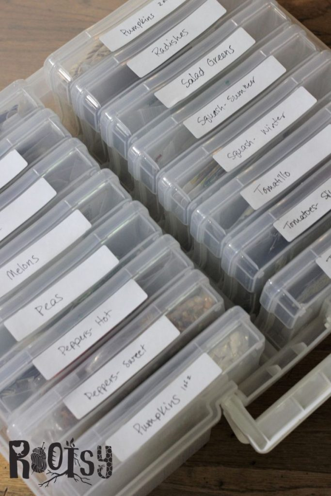 photo organizing boxes filled with seed packets for storage