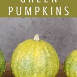 A green pumpkin on a table with text overlay reading: how to ripen green pumpkins.