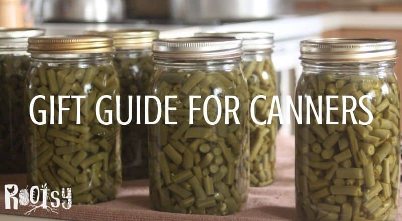 A row of canned green beans in glass jars with text overlay reading gift guide for canners.