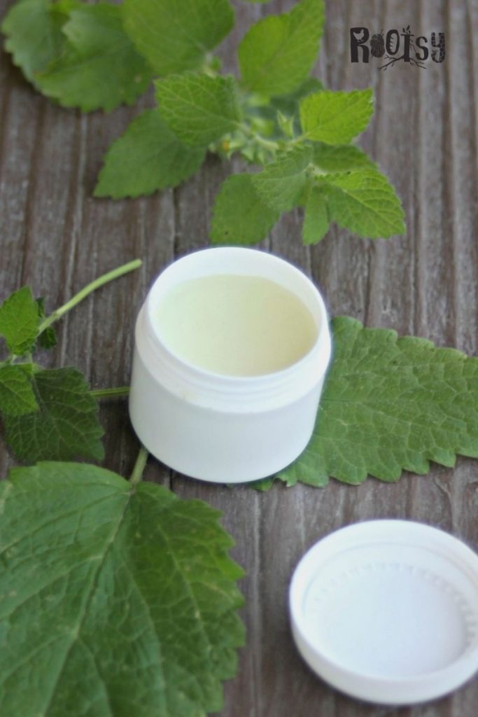 A round plastic pot full of lip balm surrounded by green herb leaves.