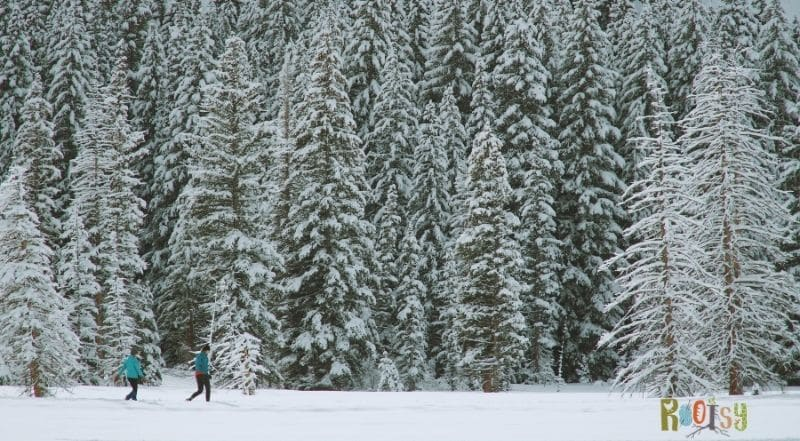 Get outside and enjoy the winter for a true winter experience.