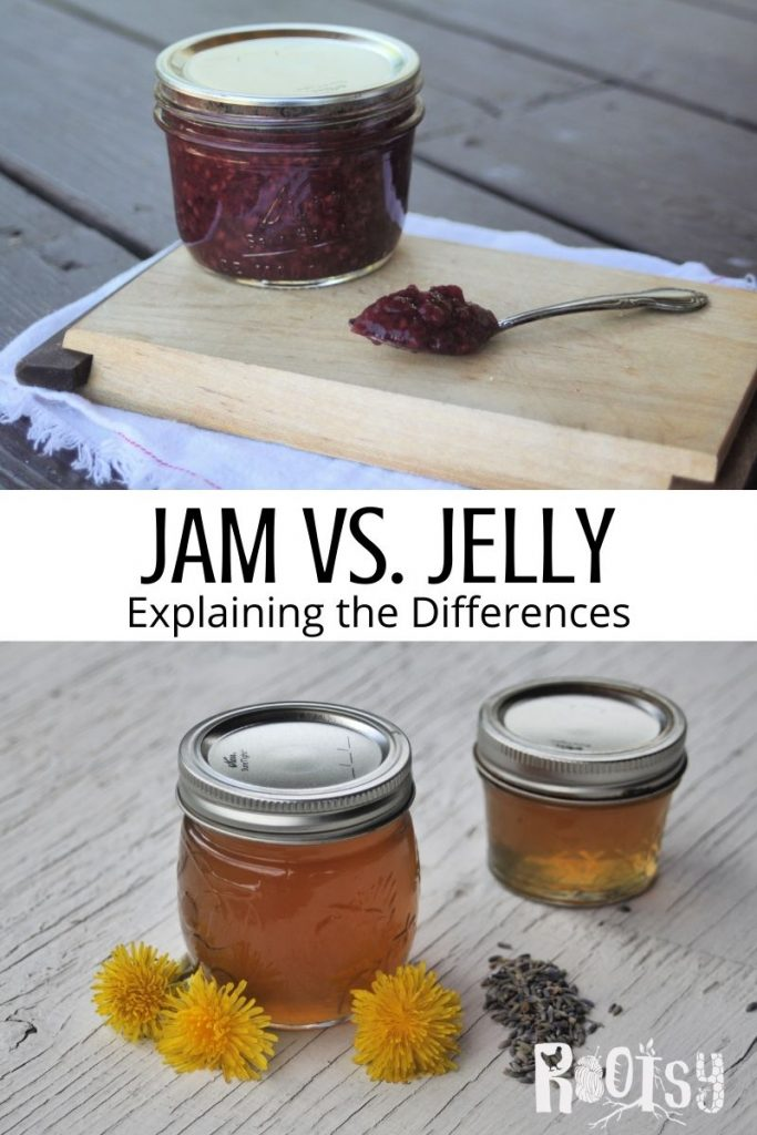 An image of A jar of jam sitting on a wooden cutting board with a spoon full of jam sitting next to it, stacked on top of text overlay stating jam vs. jelly, explaining the differences, stacked on top of an image of two jars of dandelion jelly surrounded by dandelion flowers and lavender buds.