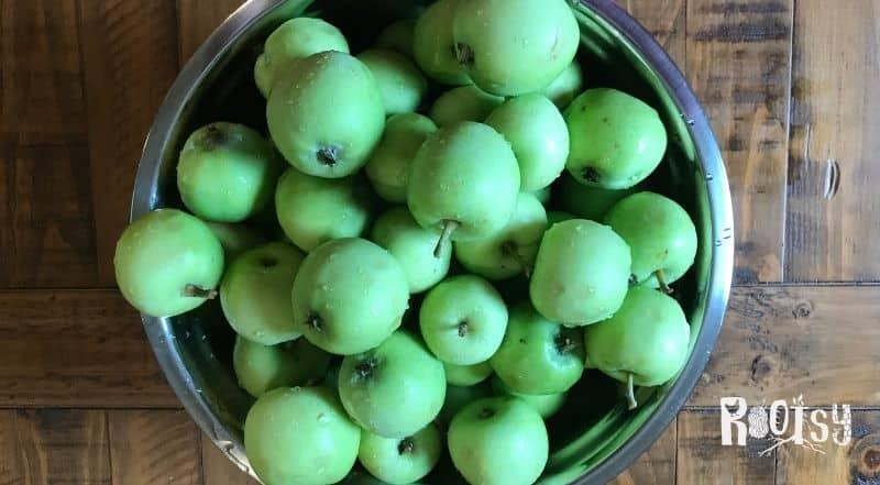 A metal bowl full of green apples.