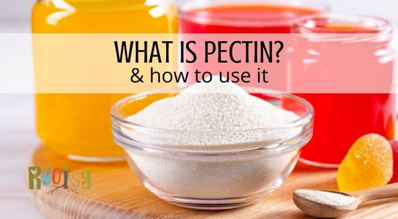 A bowl of powdered pectin sitting on a board with a wooden spoon full of pectin and jars of jelly in the background with text overlay reading What is Pectin? & how to use it.