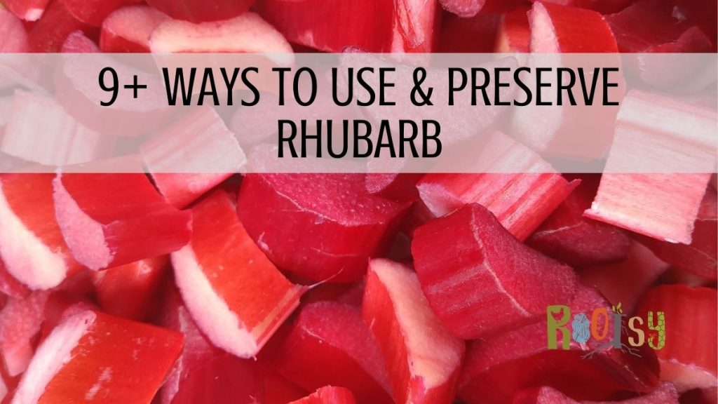 9+ Ways to Use and Preserve Rhubarb