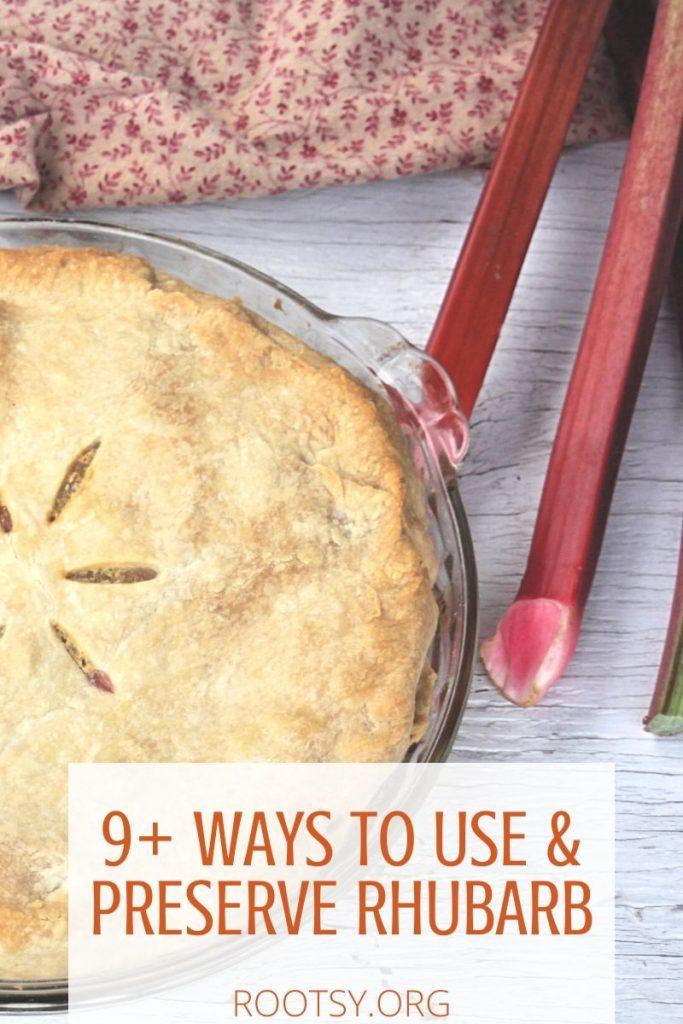 9+ Ways to Use & Preserve Rhubarb