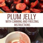 collage of plum halves and open jar of homemade plum jelly with canning funnel