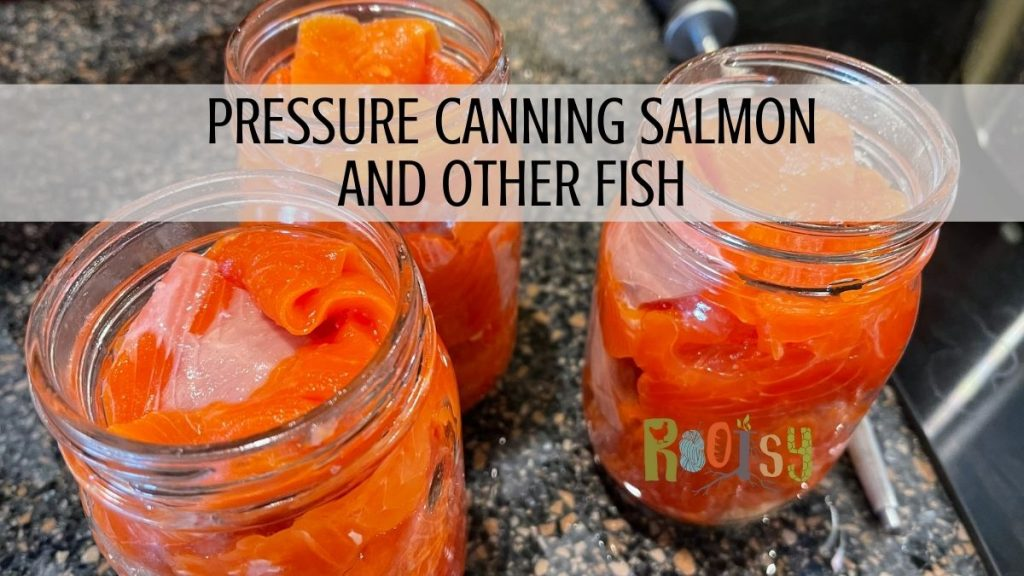 Pressure Canning salmon and other fish