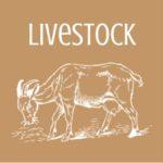 Group logo of Livestock